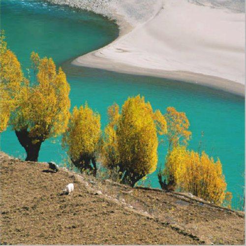 西藏林芝5日自助游全攻略